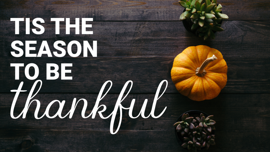 Tis the Season to be Thankful Image