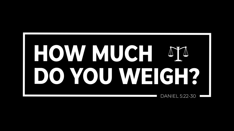 How Much Do You Weigh? Image